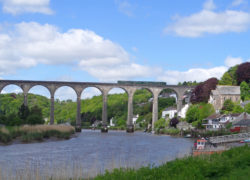 New later Summer Sunday Tamar Valley Line train starts on 21 May