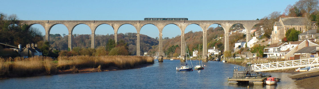 Train on Calstock Viaduct - photo by Mark Lynam
